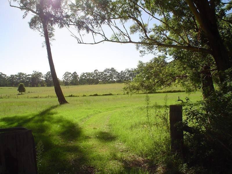 584 Coralville Road, Coralville, NSW 2443