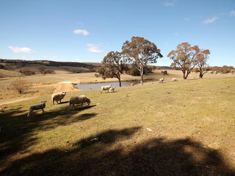 192 Doust Road, Lake George, NSW 2581