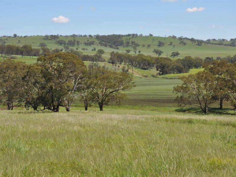 705 Coolah Rd, 'Culbara', Cassilis, NSW 2329