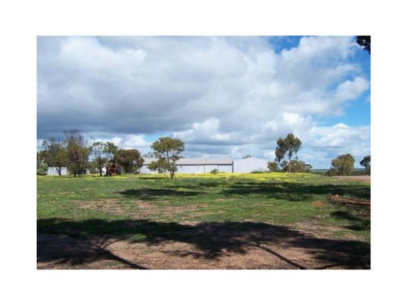 77  Harvey Street, Dumbleyung, WA 6350