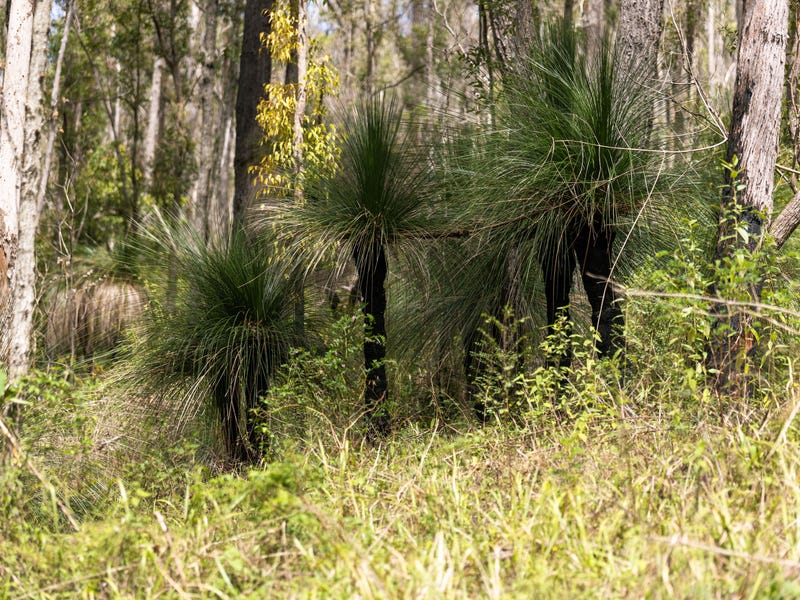 Lot 71 Careys Road, Hillville, NSW 2430