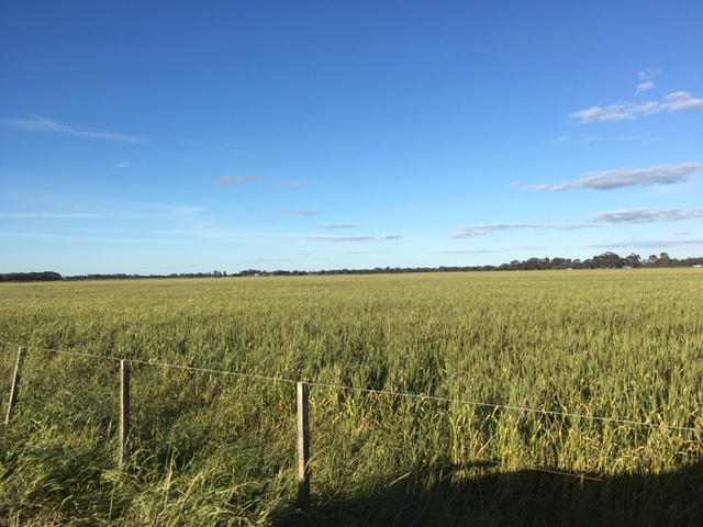 Lot 1, WHINFIELD ROAD, Kotta, Vic 3565