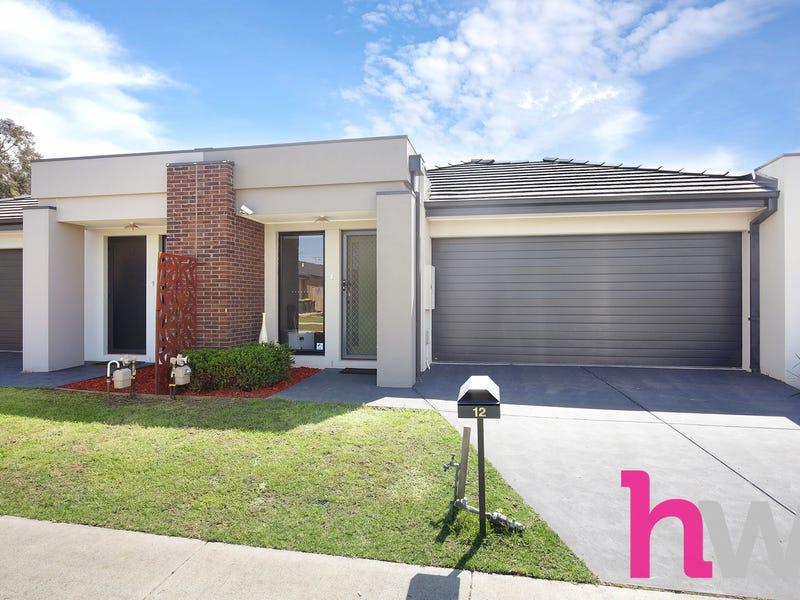 12 Jobbins Street, North Geelong, Vic 3215