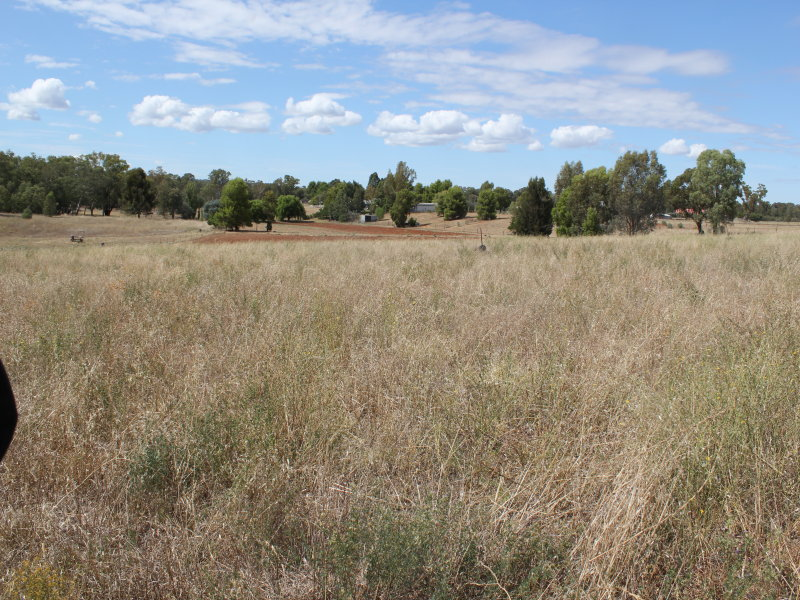 26 Tanks Rd, Parkes, NSW 2870