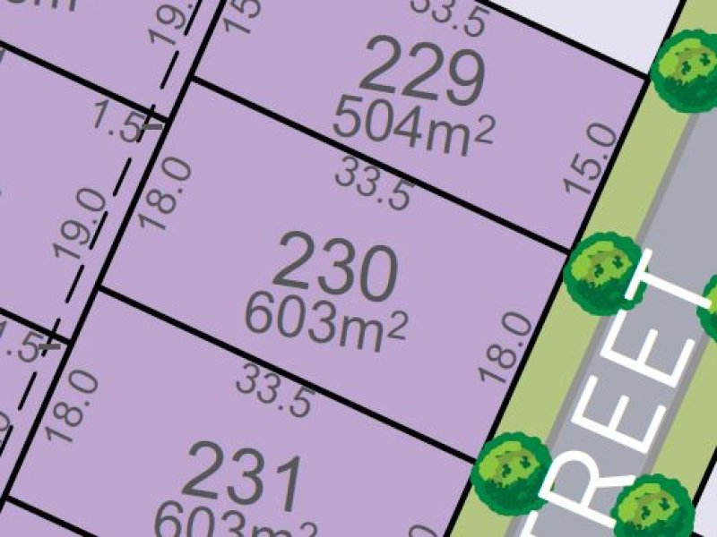 Lot 230, Vine Street, Chisholm, NSW 2322