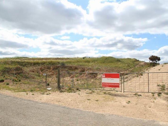 22 Kirkness Road, Mannum, SA 5238