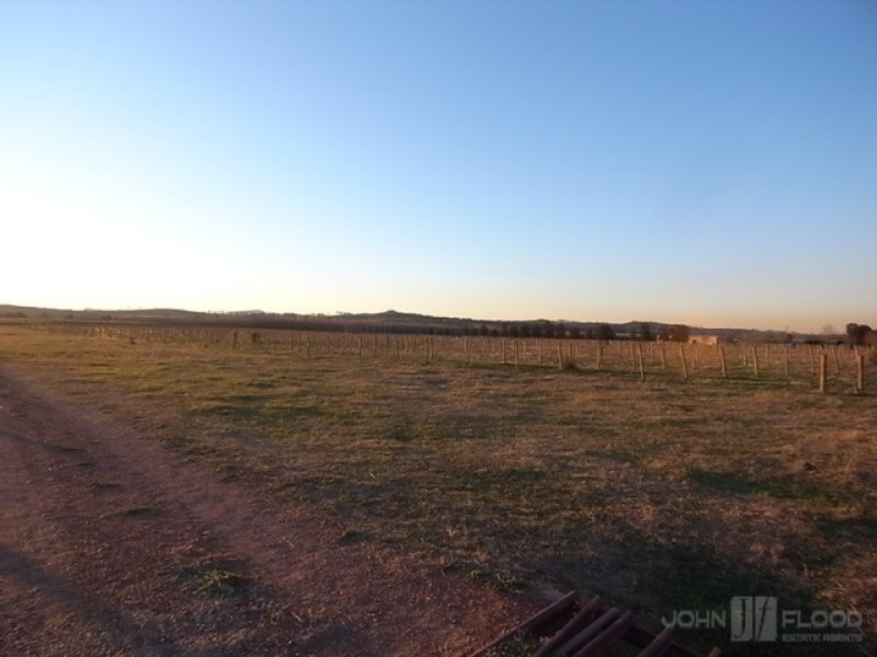 1461 Denman Road, Muswellbrook, NSW 2333