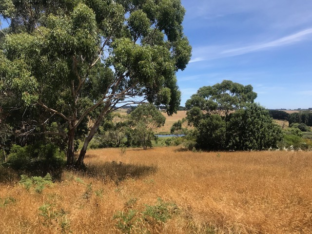 Lot 7 Timboon Curdievale Road, Timboon West, Vic 3268