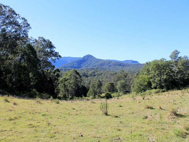 Lot 1 & Lot 117 Davis Road, Green Pigeon, Kyogle, Kyogle