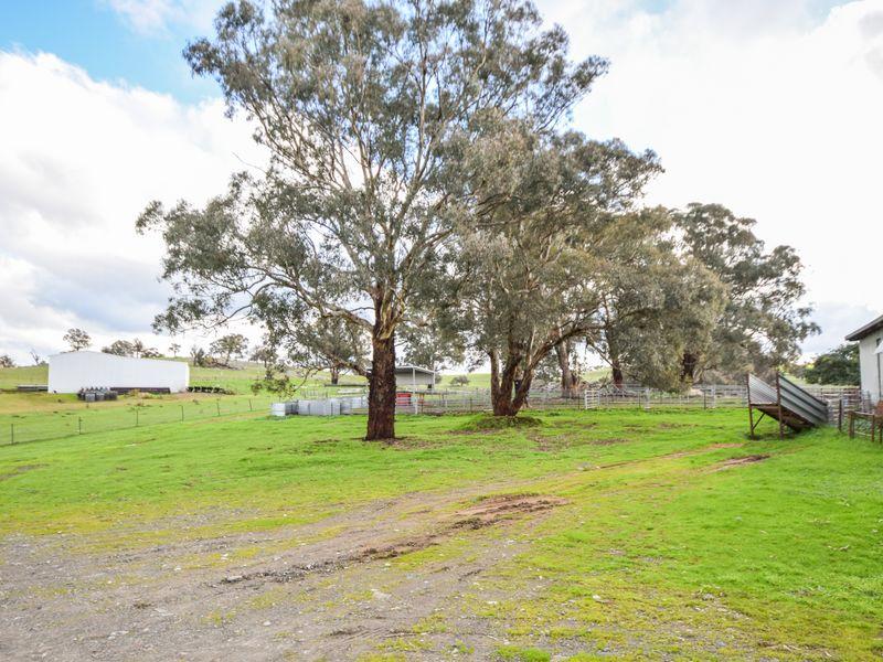 3243 Wargeila Road, Yass, NSW 2582