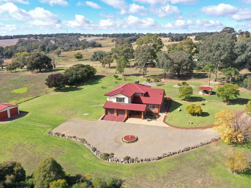 375 Back Creek Road, Young, NSW 2594