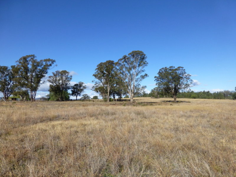 4640 Newell Highway, Peak Hill, NSW 2869