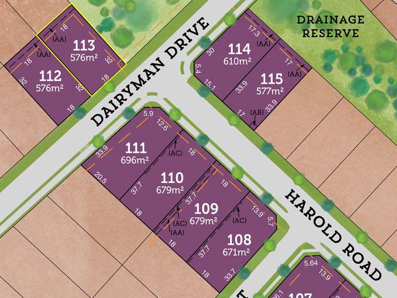 Lot 113 Dairyman Drive, Raymond Terrace, NSW 2324