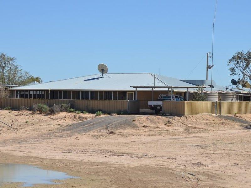 * Whyjonta Station, Tibooburra, NSW 2880