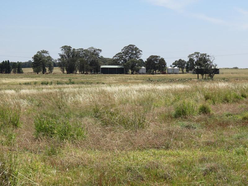 Allambie Farm 20 R Veeches Road, Wongarbon, NSW 2831