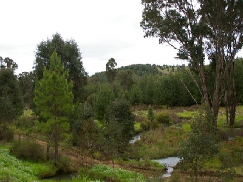 Lot 500 Brockman  Highway, Nannup, WA 6275
