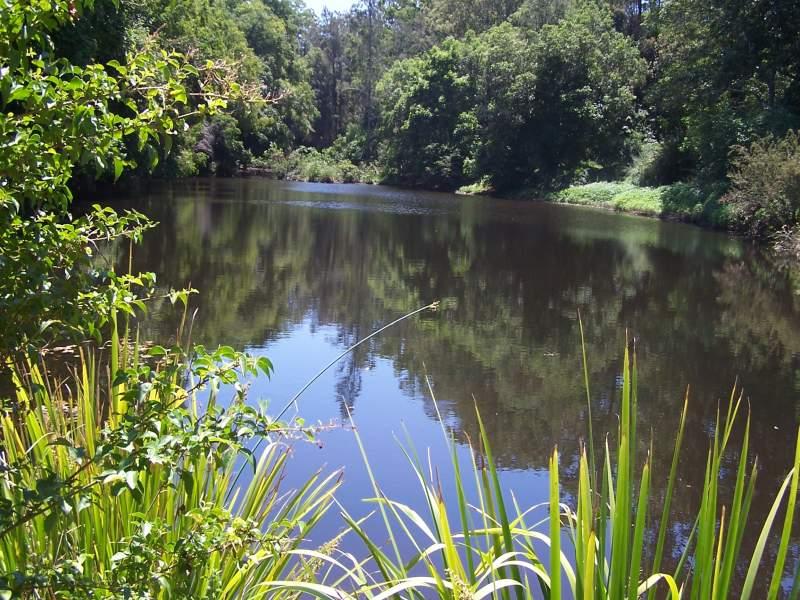 80 Dargavilles Road, Nabiac, NSW 2312