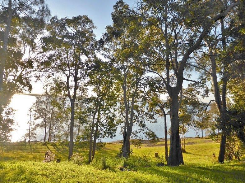 167 Lakes Blvde, Wooloweyah, NSW 2464