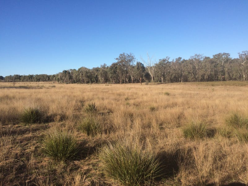 140 TURILL BUS ROUTE, Turill, NSW 2850