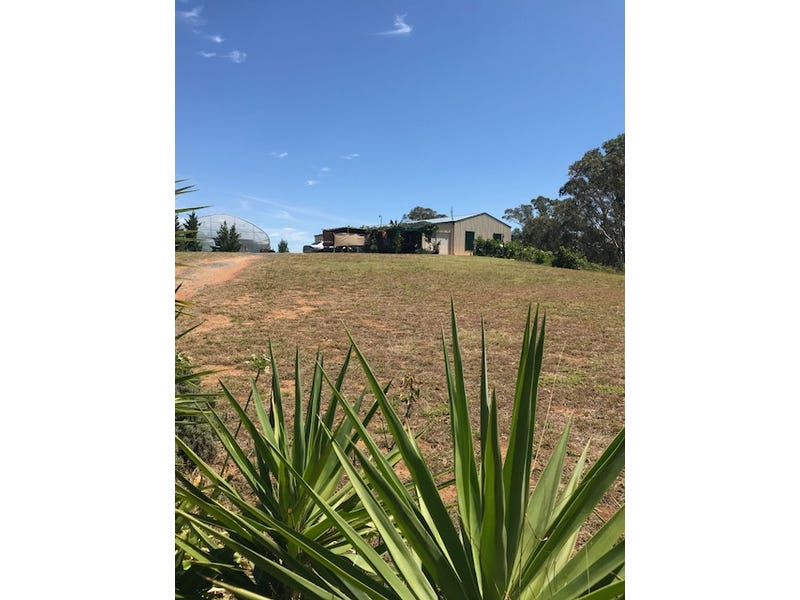 22 Browns Lane, Young, NSW 2594