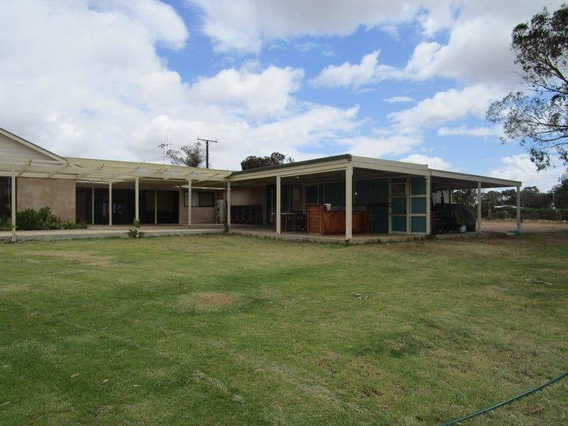 44 Davidon Road, Barmera, SA 5345