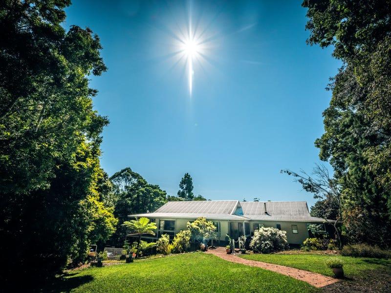 161 Mount Street, Bellingen, NSW 2454