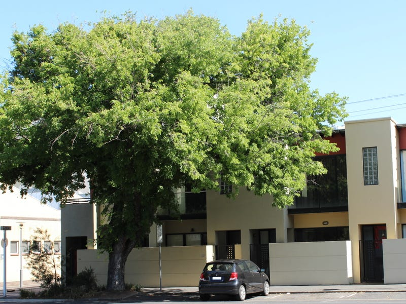 26 Sturt Street, Adelaide, SA 5000
