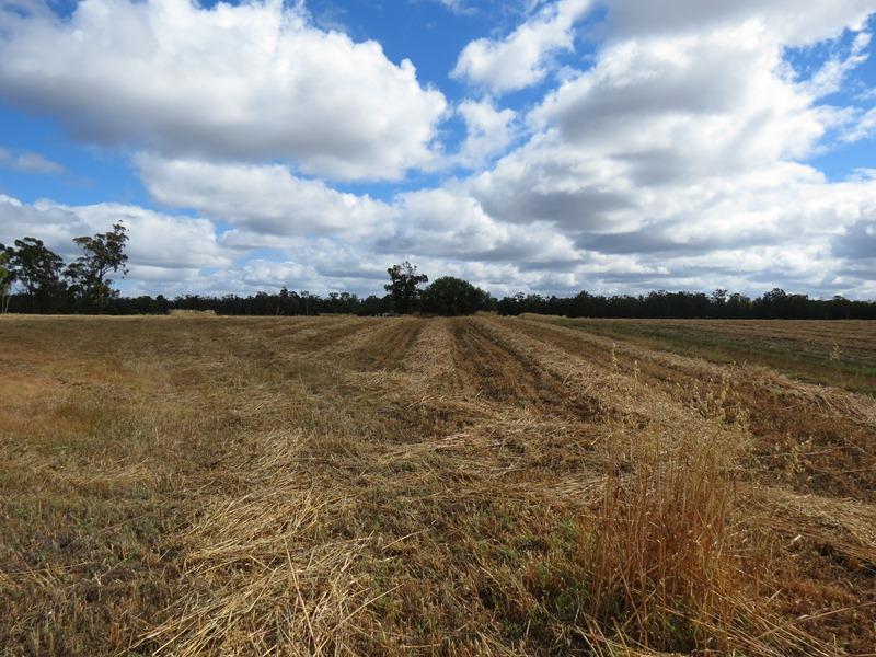 198 Indian Lane, Baradine, NSW 2396