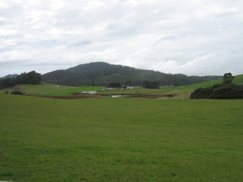 1556 Pine Road, Riana, Tas 7316