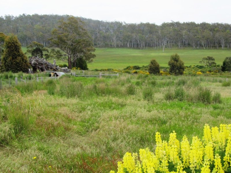 Lot 1/718 Tunnack Road, Parattah, Tas 7120