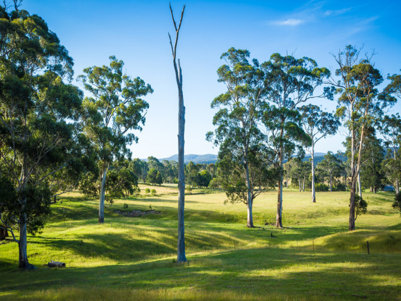Lot 6, 13 Millingandi Road, Millingandi, NSW 2549