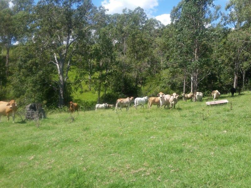Lot 11 Yongurra Road, Kyogle, NSW 2474