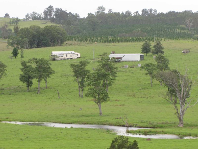 Lot 124, Bonalbo Rd, Mallanganee, NSW 2469