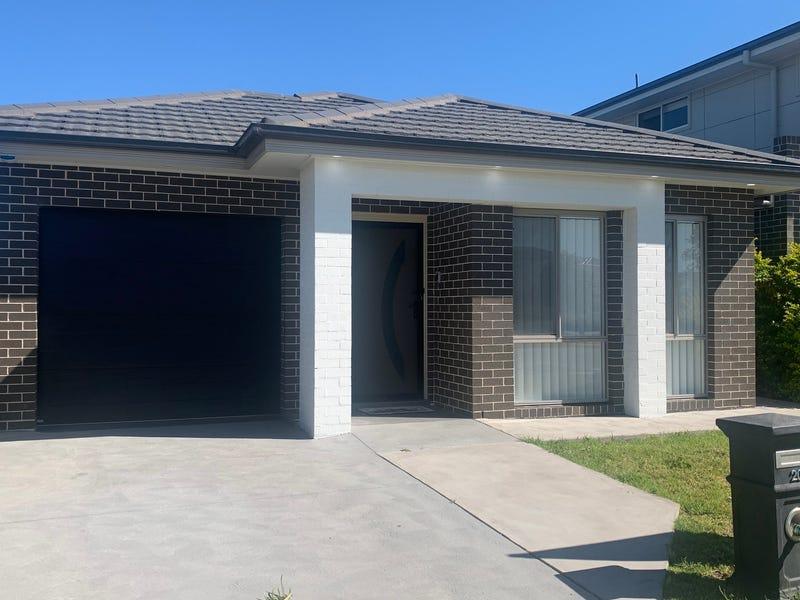 20 Dogwood Crescent, Denham Court, NSW 2565