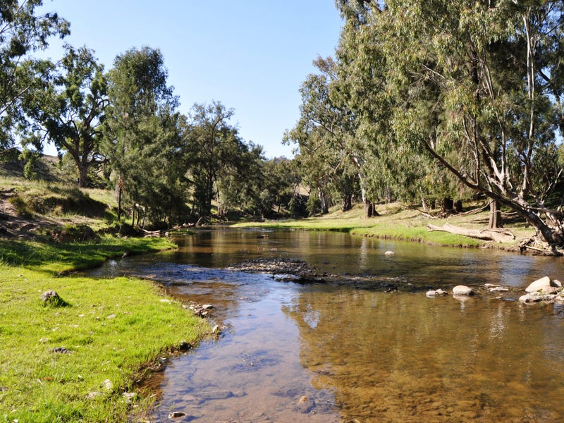 3697 Yarrabin Road, Gulgong, NSW 2852