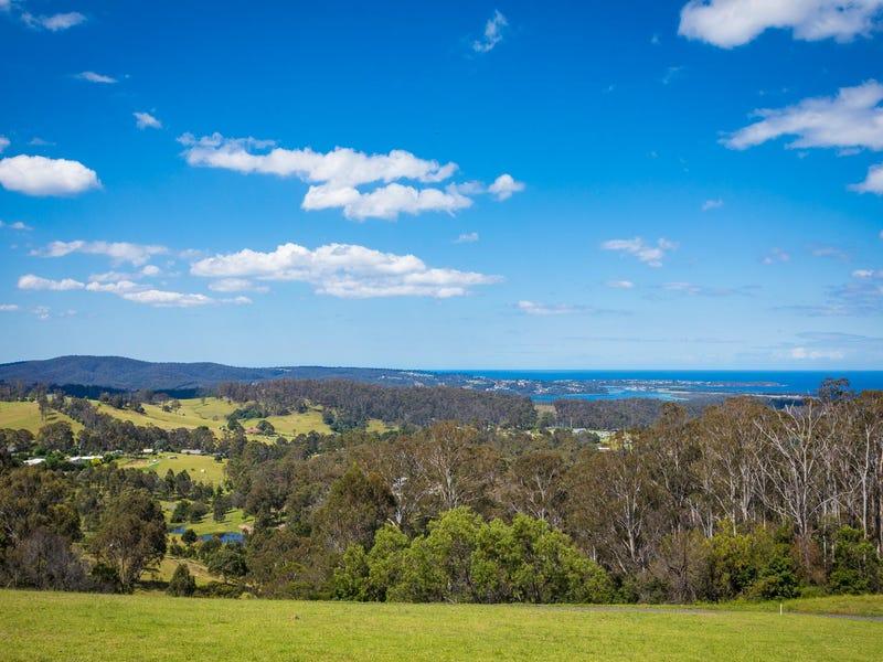 Lot 44 Omaru Lane, Bald Hills, NSW 2549