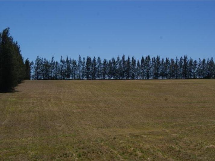 Lot 565 Minimbah road, Whittingham, NSW 2330