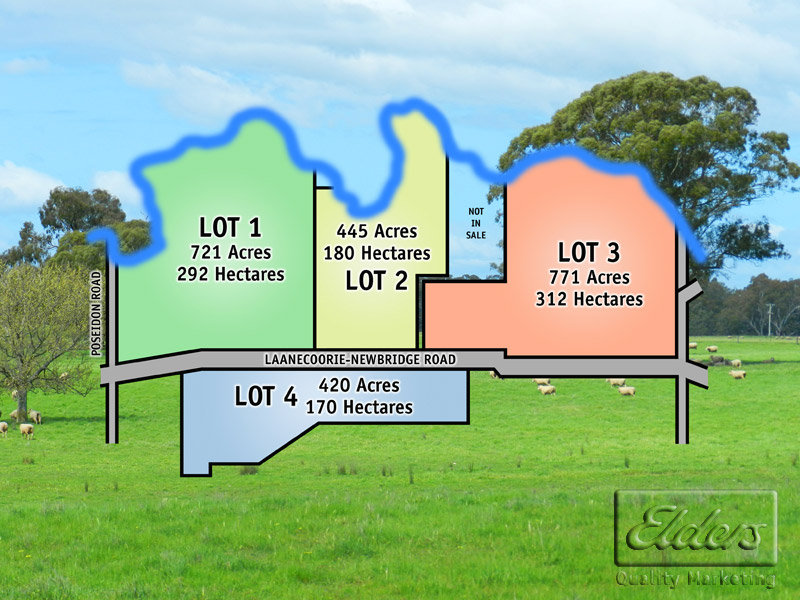 "2358 Acres ""Lagoona Park"", Newbridge, Vic 3551"