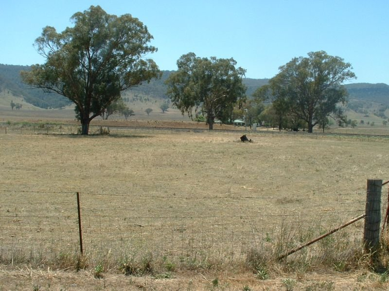 Lot 3, Willow Tree Road, Braefield, NSW 2343