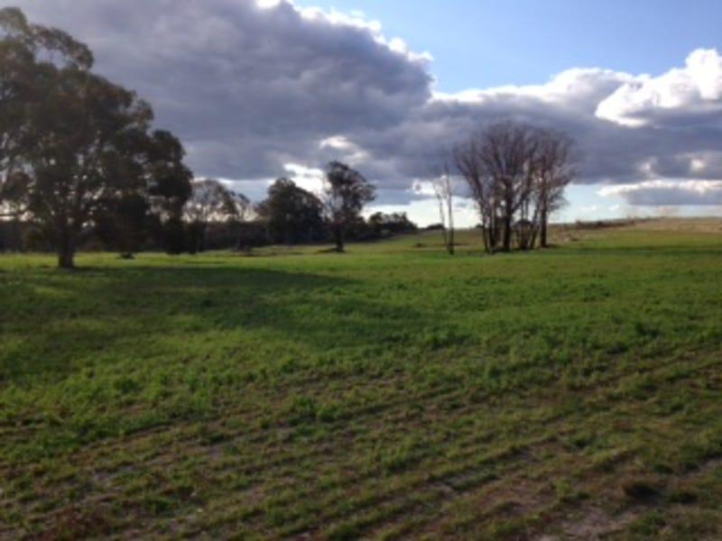 540 Ramah Road, Guyra, NSW 2365