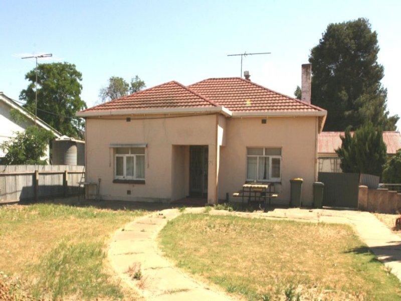 75 Railway Terrace, Paskeville, SA 5552