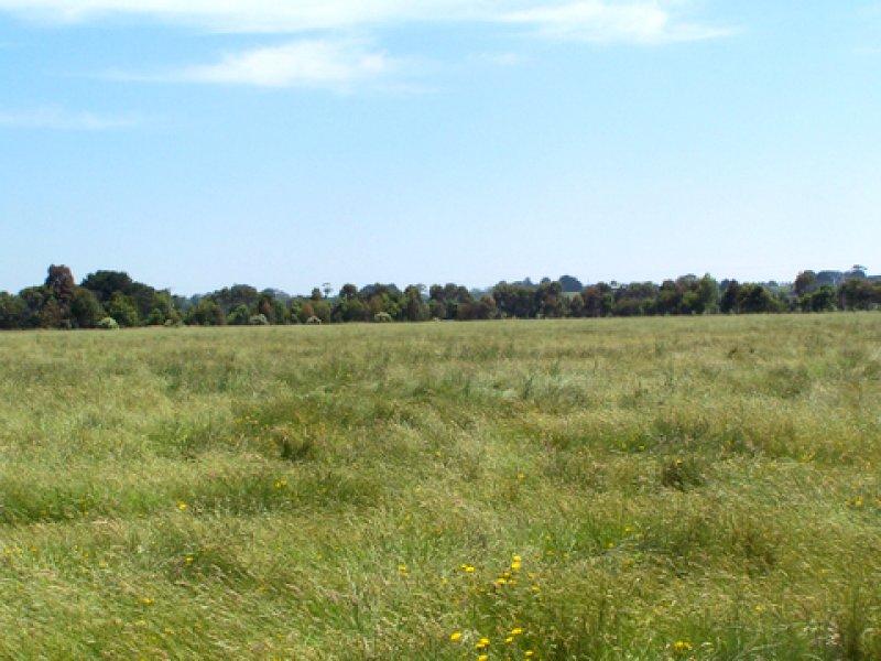 Swan Marsh - Stoneyford Rd, Swan Marsh, Vic 3249
