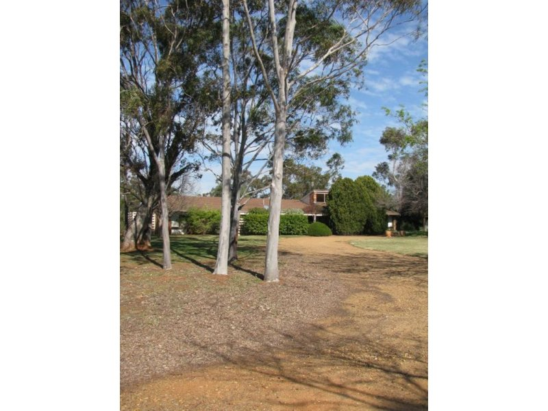 . Oxley Highway, Braeview, Warren, NSW 2824