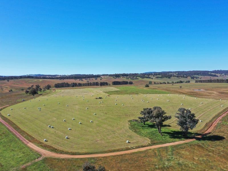13566 Oxley Highway, Walcha, NSW 2354