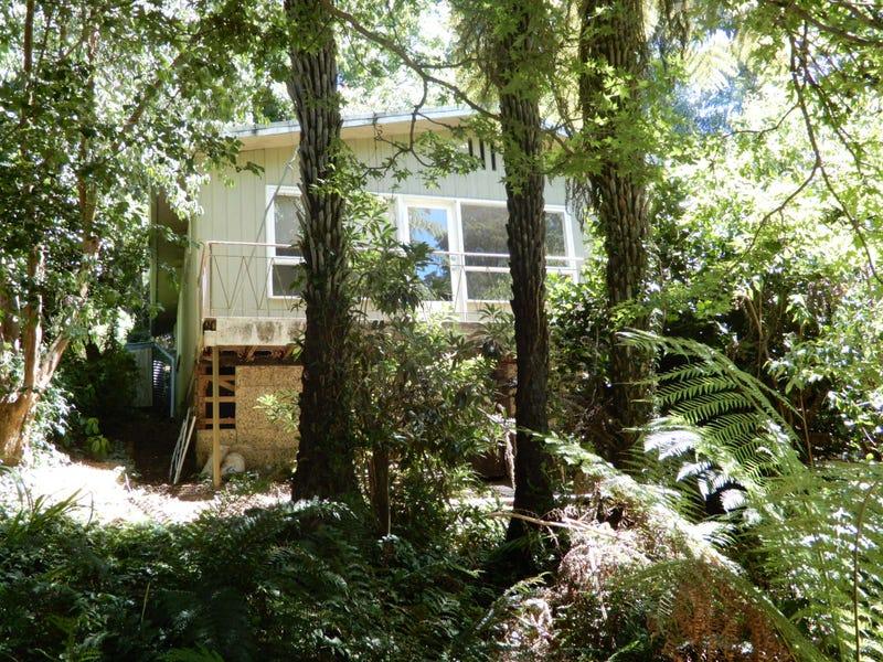 6 BEAGLEY STREET Kallista Vic 3791 - House for Rent #423222774 ...