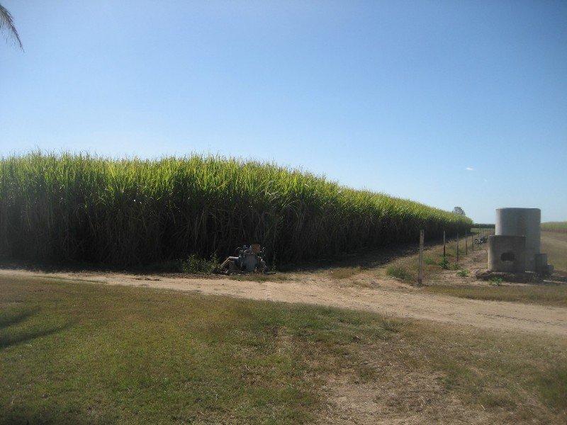 L5 Tobruk Road, Clare, Qld 4807