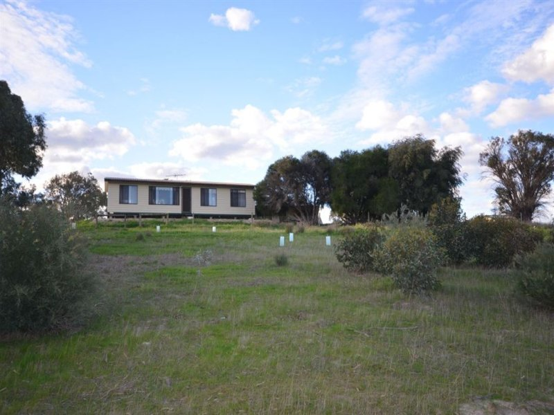 1091 Ferries McDonald Road, Monarto South, SA 5254