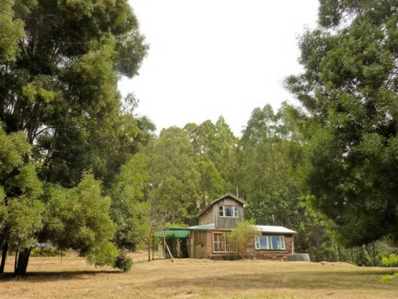 118 Luttrells Road, West Kentish, Tas 7306