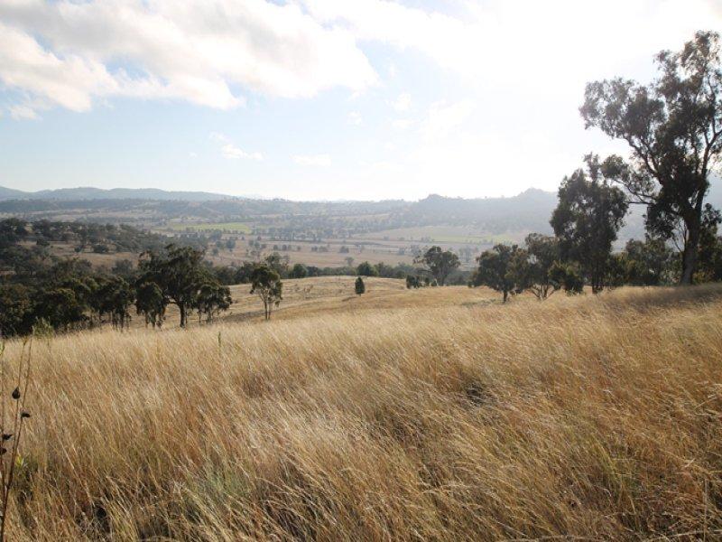Lot 1 Borambil Creek Road, Willow Tree, NSW 2339