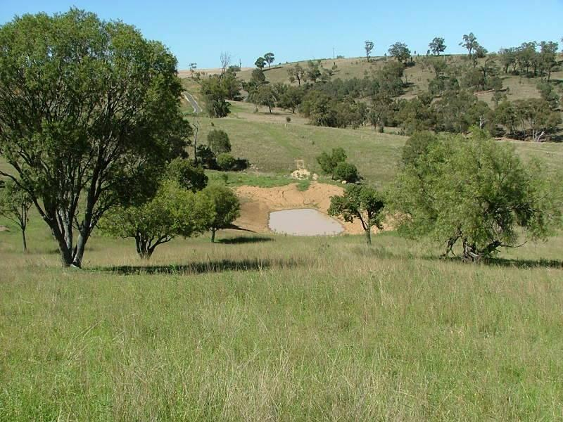 Sandy Creek Rd, McCullys Gap, NSW 2333